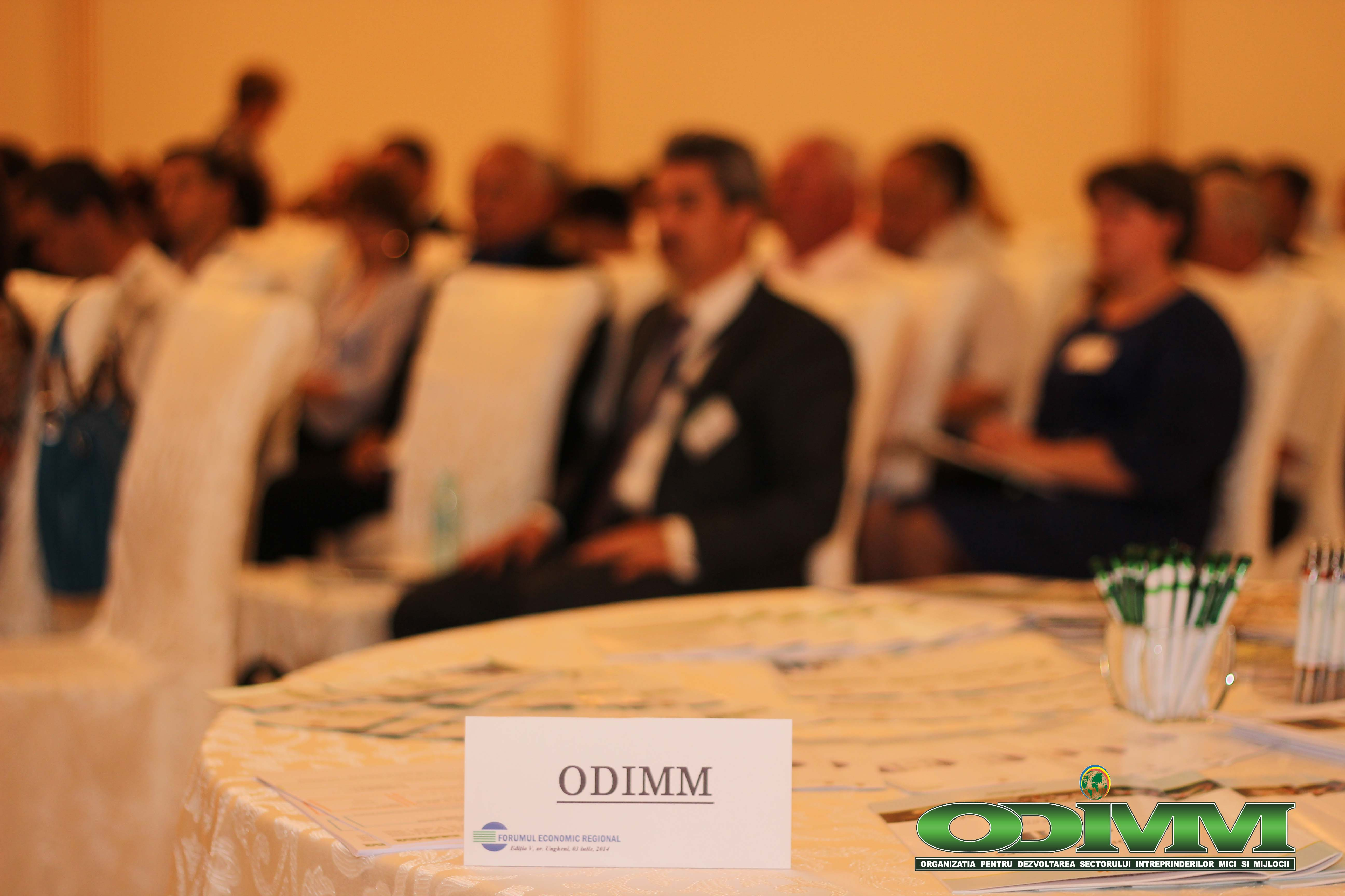 Forum Economic Regional Ungheni ODIMM1