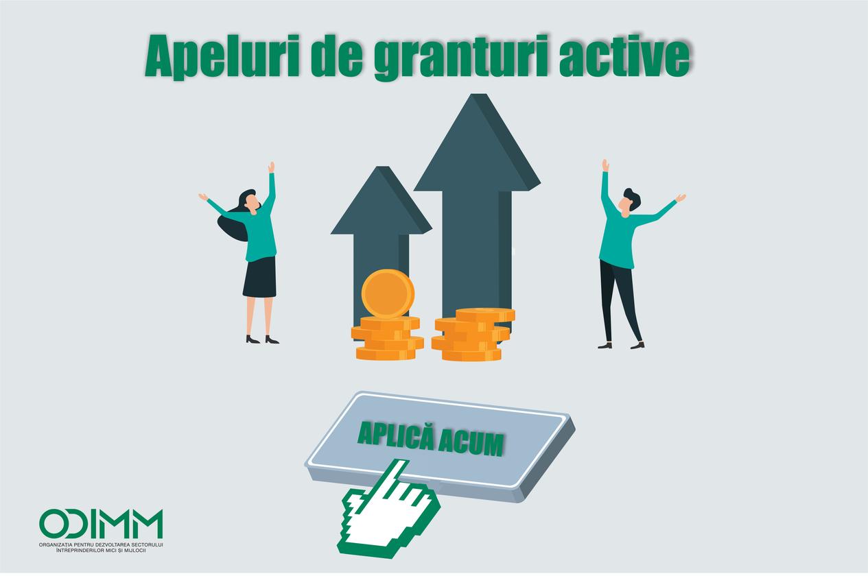 Apeluri de granturi active