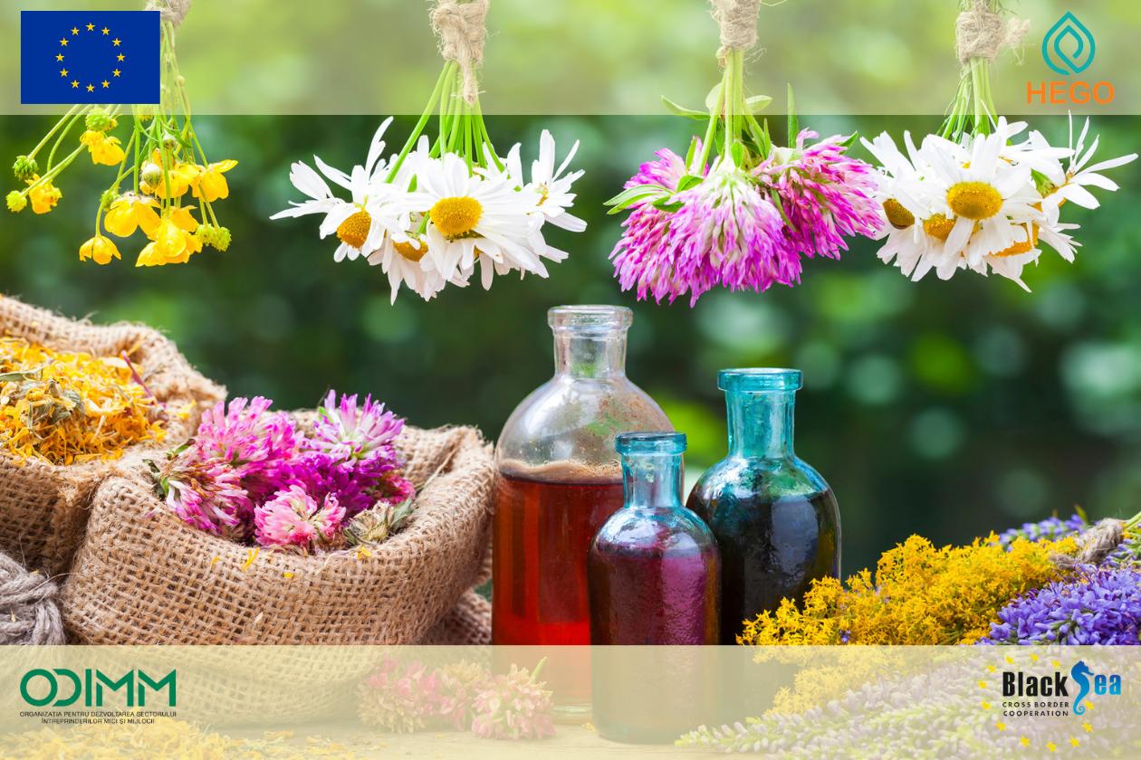 Sondaj de cercetare a sectorului  plantelor erbacee și a produselor din plante cu valoare comercială adăugată