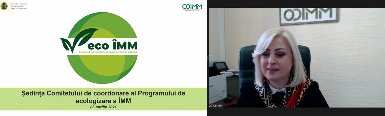Primele 17 companii din Republica Moldova vor primi finanțare pentru activități de ecologizare