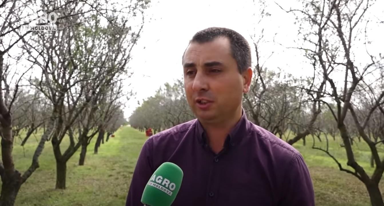 Sistemul de management al ÎMM: Igor Golban - etichetarea Eco face diferența