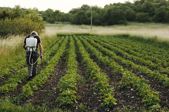 Care sunt măsurile bugetar-fiscale pentru susținerea sectorului agricol afectat de calamitățile naturale?